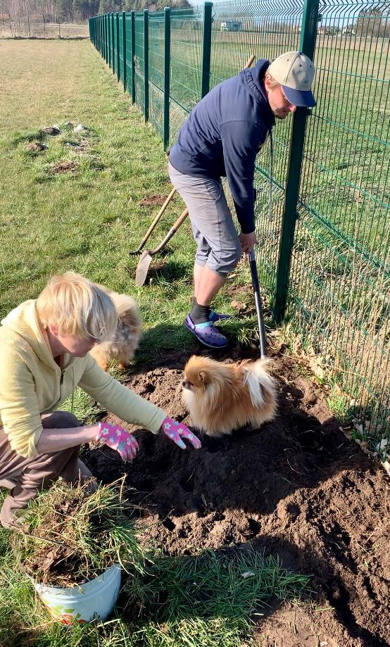 Rēzija un Ainārs arī dārza darbus mājās nedala. Šobrīd aktuāla ir cīnīšanās ar kurmju rakumiem.