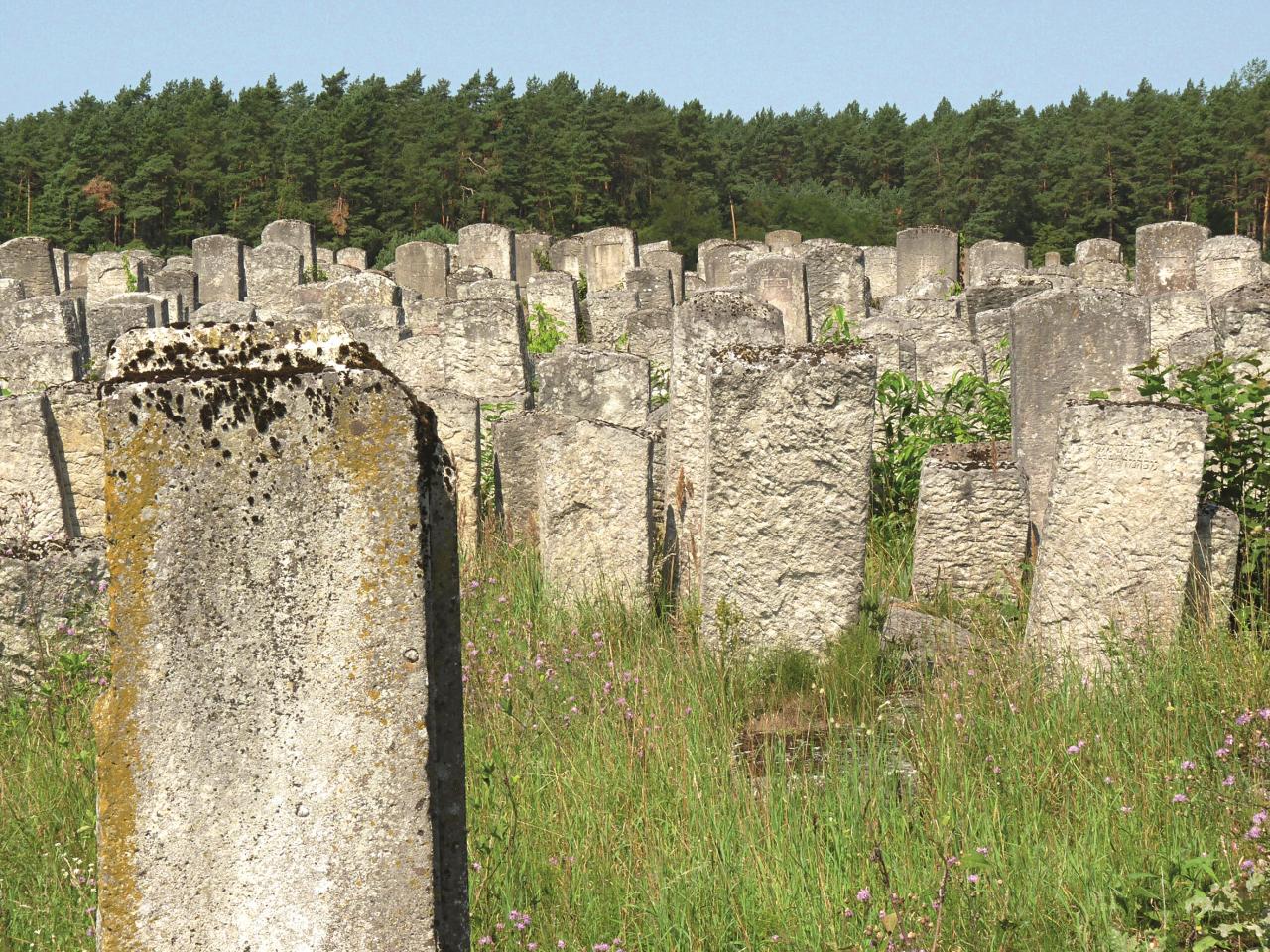 Vecā ebreju kapsēta Brodos