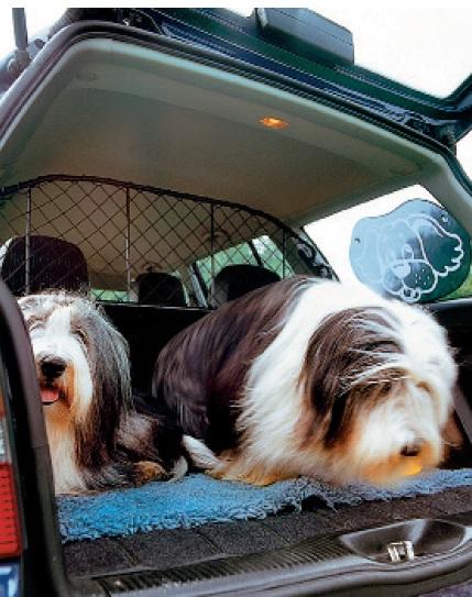 Risinājums lielu suņu īpašniekiem: robusts, bet tomēr relatīvi kompakts drošības režģis, ko stiprina pie galvas balstiem.