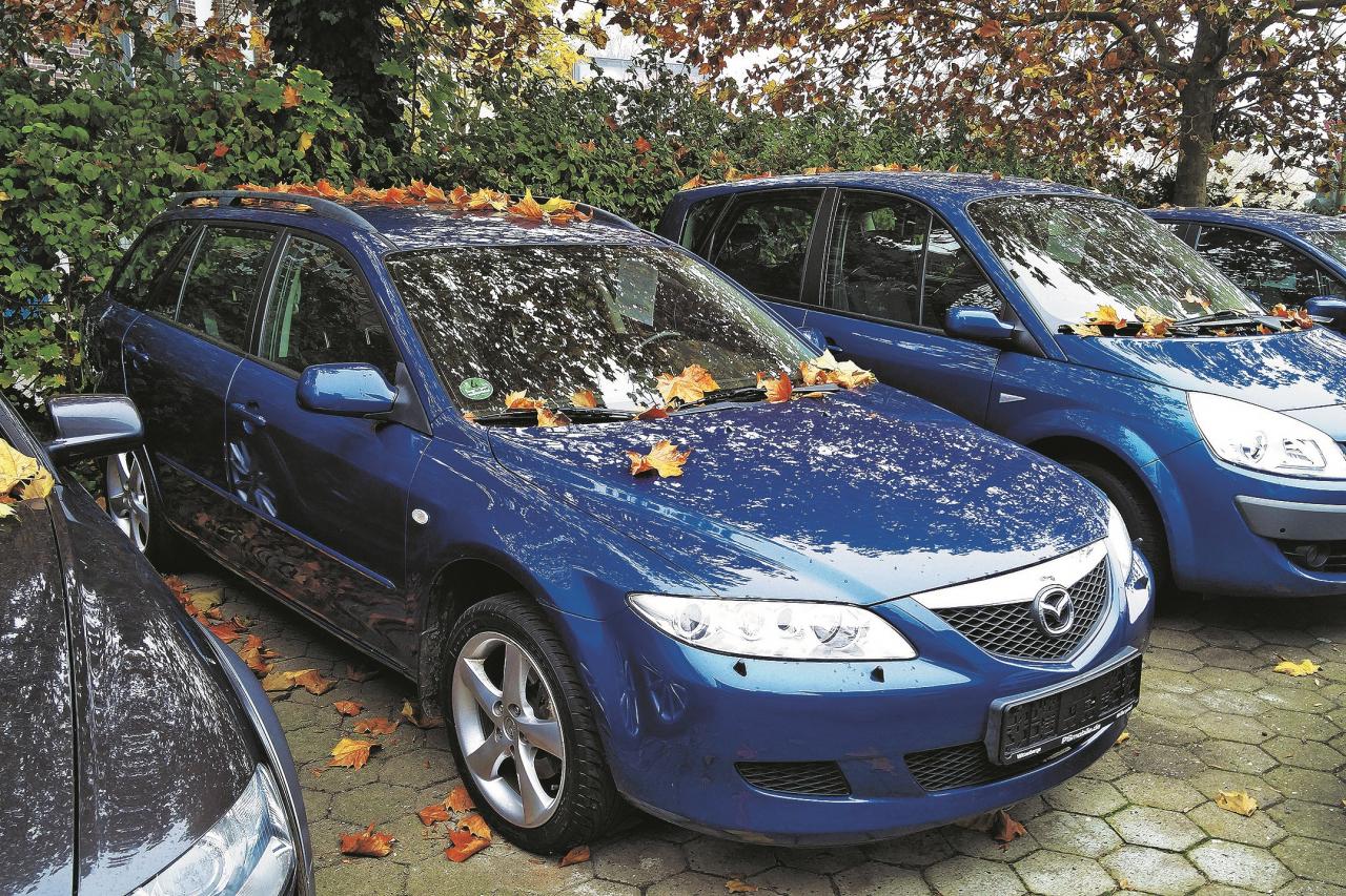 2003. gada Mazda ar pilnpiedziņu maksā no 1900 eiro. 155 000 km nobraukums šķiet ticams. Diemžēl tādam ir arī rūsa.