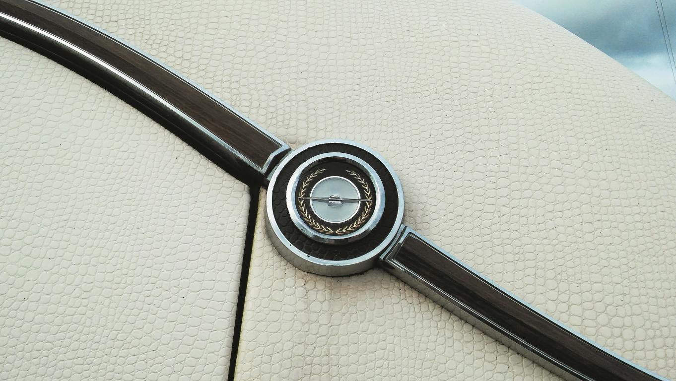 Thunderbird emblēmiņa (vētrasputns)dekoratīvā cirkuļa vidū.