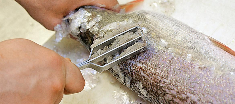 Zvīņu tīrīšana līdakai rit viegli, labāk nekā asariem, zandartiem un līņiem. Var tīrīt ar speciālo rīku, var arī ar dakšu un citiem rīkiem. Pēc tam zivi noskalo tekošā ūdenī.