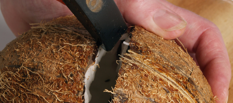 4. Šajā vietā stingrāk padauza ar āmuriņu, līdz rieksts pāršķeļas.