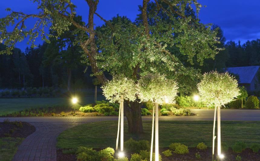 <strong>Piemērots dārza apgaismojums</strong> diennakts tumšajam laikam