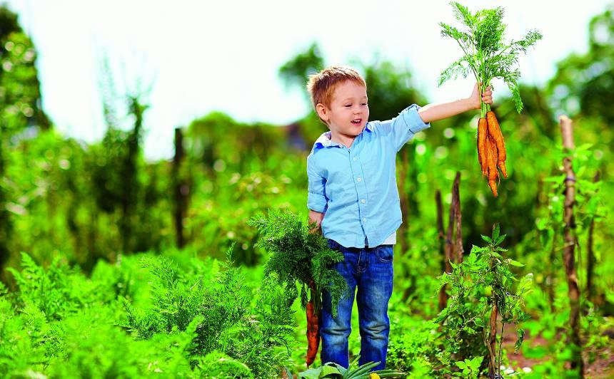 Kādēļ bērnam labāk izvēlēties bioloģisko pārtiku?