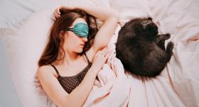 Kaķiem patīk <strong>gulēt saimnieka gultā</strong>. Par ko tas liecina?