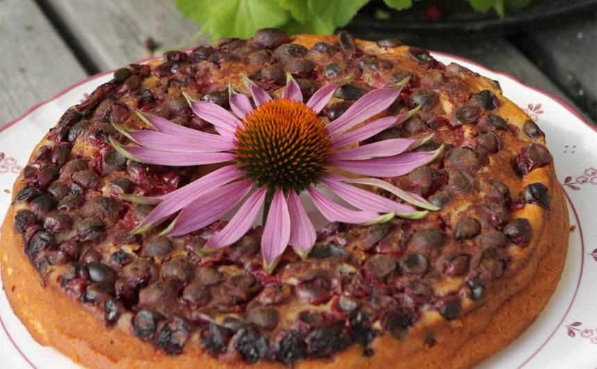 Kefīra kūka ar ogām recepte