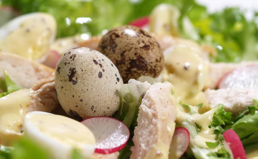 Salāti ar paipalu olām un grilētu vistu recepte