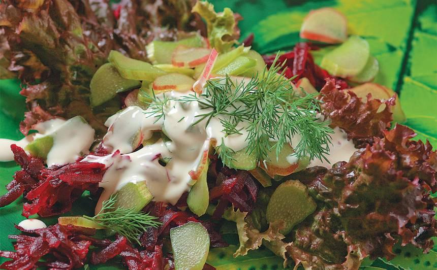 Salāti ar rabarberiem un bietēm recepte