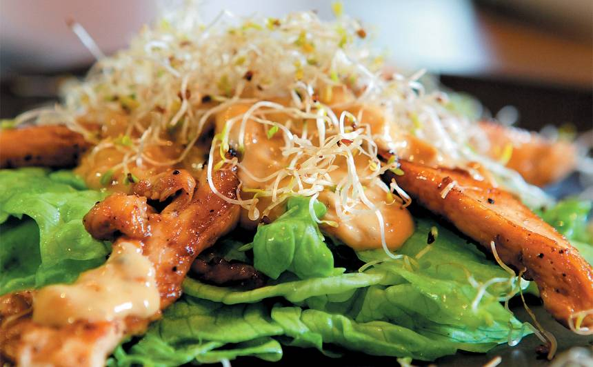 Ledus salāti ar zilā siera mērci un vistas fileju recepte