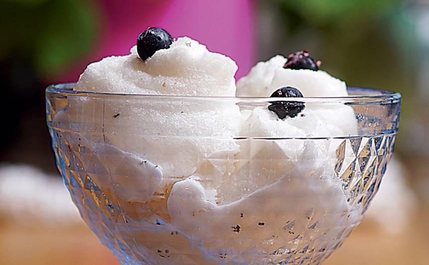 Bērzu sulas saldējums