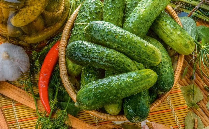 Sālīti gurķi recepte