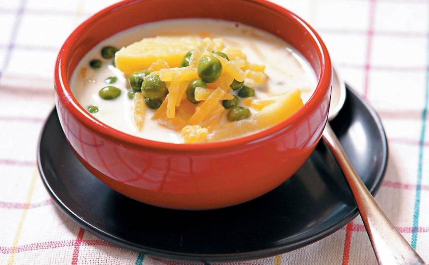 Piena zupa ar dārzeņiem recepte