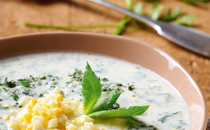 Aukstā skābeņu un piparmētru zupa recepte