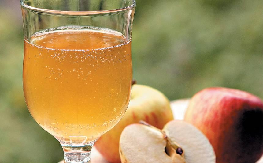 Sausais ābolu sidrs recepte