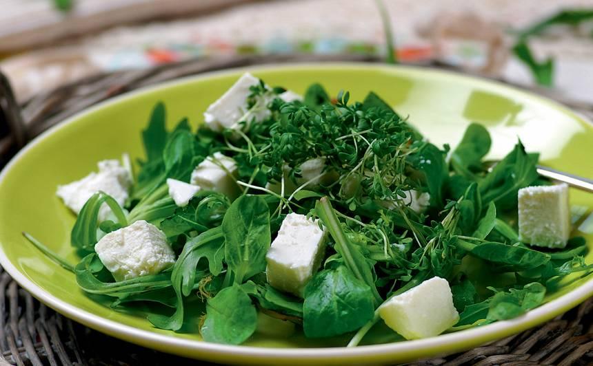 Salātu mikslis ar sieru recepte