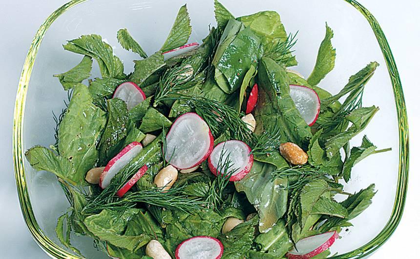 Gārsu un skābeņu salāti