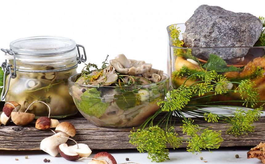 Nevārītas sālītas sēnes recepte