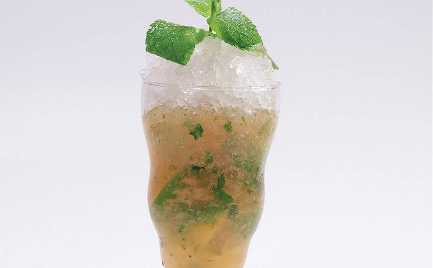 Mohito ar ābolu sulu recepte