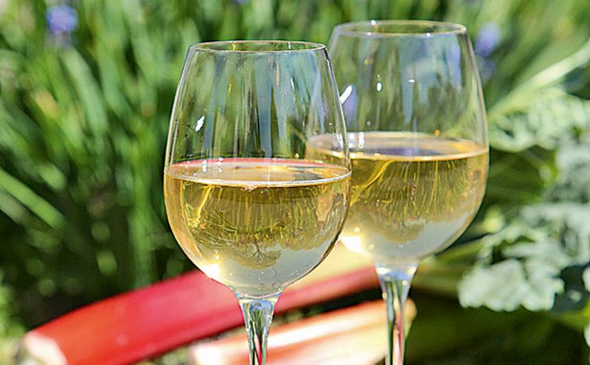 Rabarberu vīns recepte