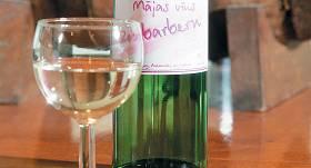 Rabarberu vīns ar atkausēšanas metodi recepte