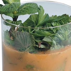 Bērzu sulas kokteilis recepte