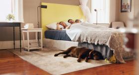 15 padomi <strong>labas guļamistabas</strong> iekārtošanai