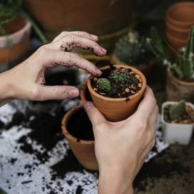 <strong>Mīkstas un maigas rokas</strong> arī pēc dārza darbu apdarīšanas