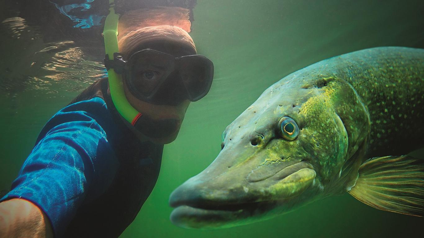 Viestura Āvas <strong>zemūdens medību vietu TOP 6</strong> no Akmeņraga līdz Madagaskarai