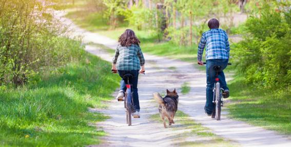 Dodamies velopastaigā ar suni!