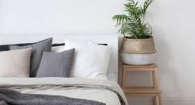 <strong>Mūsu miega kaimiņi</strong> — ieteicamie telpaugi guļamistabai