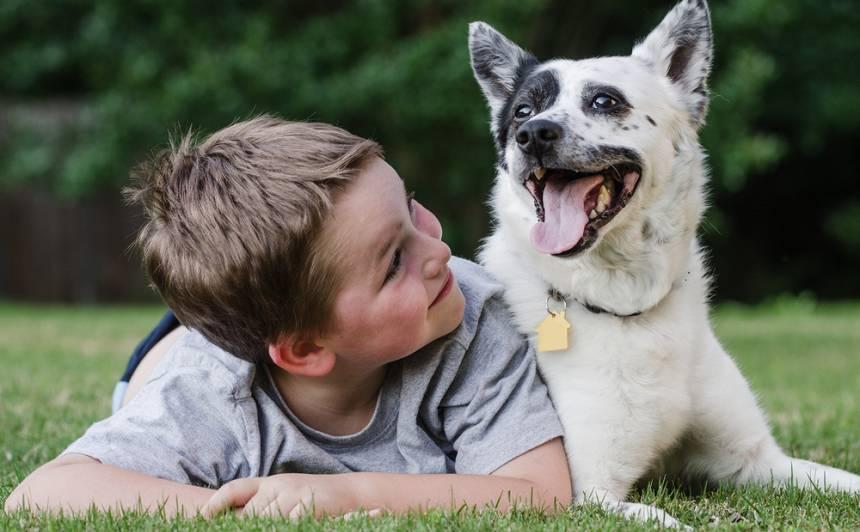 Kādu <strong>suni</strong> izvēlēties ģimenei ar bērnu?