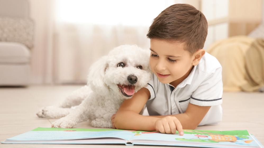 Suns — <strong>lasītprasmes skolotājs</strong> bērnam