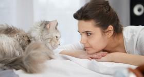 Ieteikumi, kā <em>izslēgt</em> <strong>kaķi-modinātāju</strong>