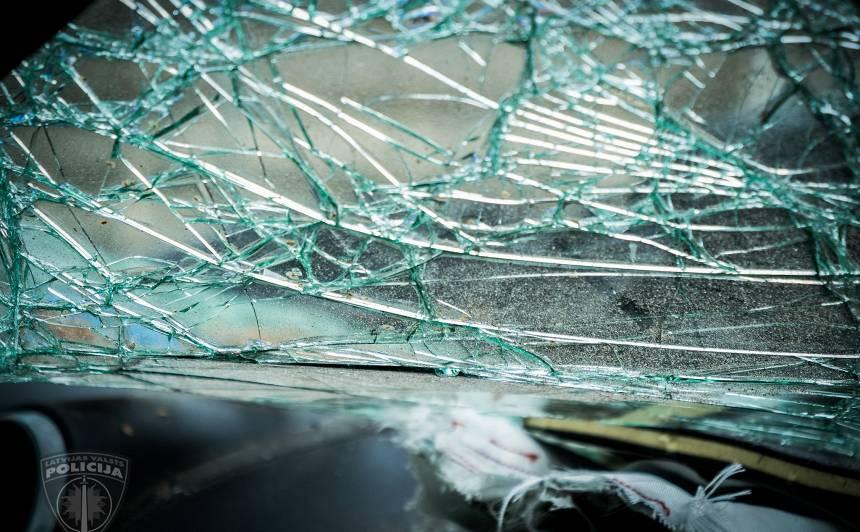 Notikušas vairākas <strong>auto sadursmes ar meža dzīvniekiem</strong> — par zvēra piesavināšanos brangs sods