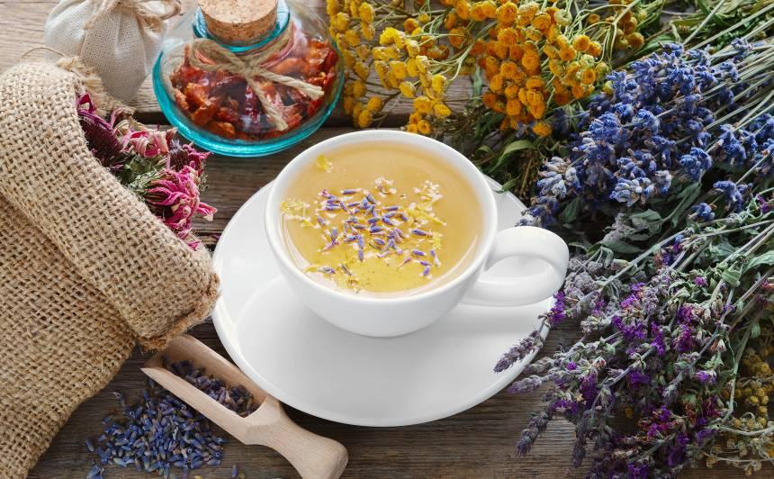 <strong>Pašas vāktas zāļu tējas</strong> — kā tās uzlabo veselību un pašsajūtu