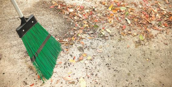 <strong>Jauna slota tīri slauka</strong> jeb kā izvēlēties labāko slotu pagalma sakopšanai