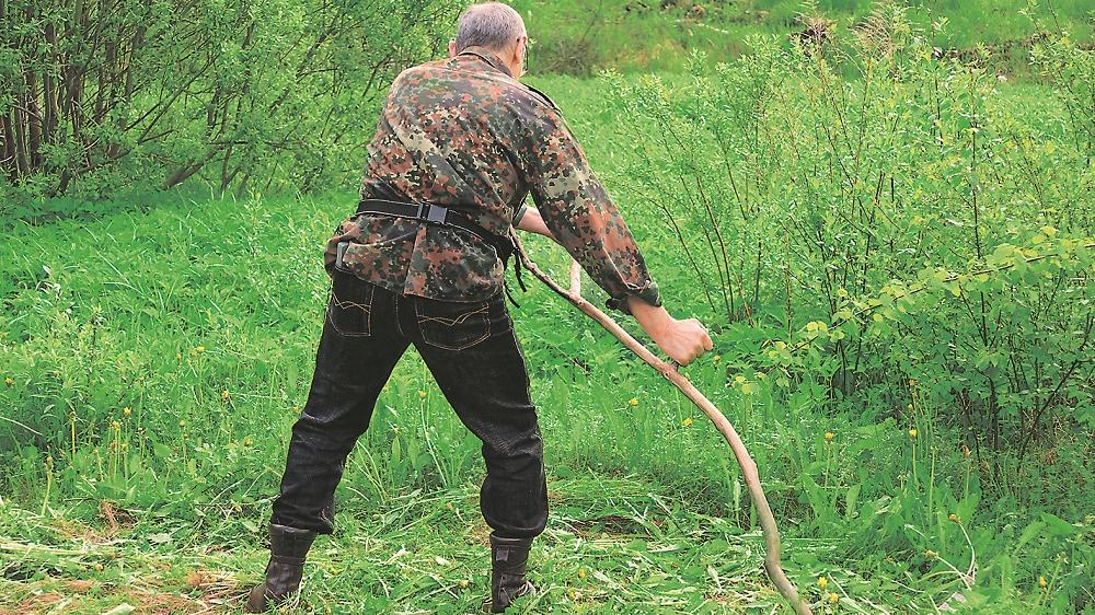 Kas jāzina par pļaušanu ar <strong>izkapti?</strong>