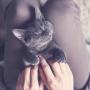 Kā <strong>saimnieka aura</strong> ietekmē mājdzīvniekus