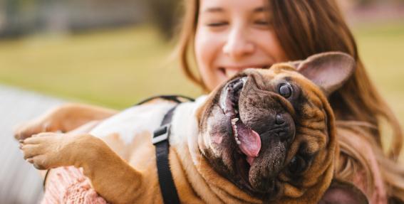 10 iemesli, kāpēc <strong>suņi ir labāki par vīriešiem</strong>