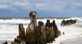 Atrastas jūrā pazudušā rotu mākslinieka <strong>Audera mirstīgās atliekas</strong>