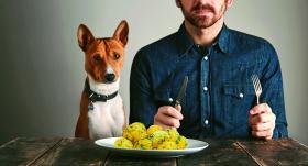 Vai suņiem <strong>drīkst dot kartupeļus?</strong>