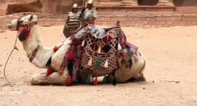 Piecu draugu ceļojums <strong>uz Jordāniju</strong>