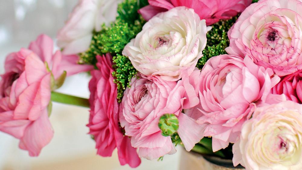 Kā ilgāk saglabāt <strong>grieztos ziedus</strong> svaigus?