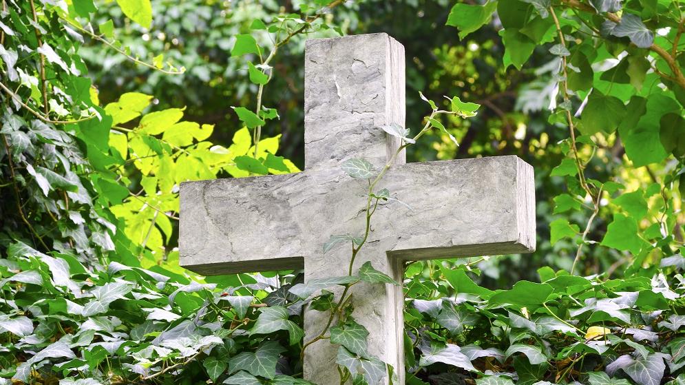 <strong>Kādus augus</strong> stādīt kapsētā?