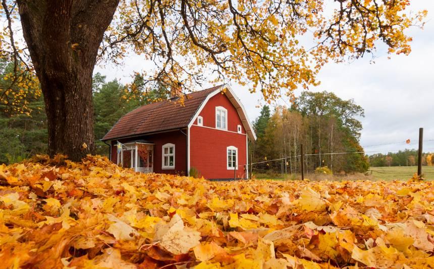 Vasaras mājas <strong>ziemas brīvdienas</strong>