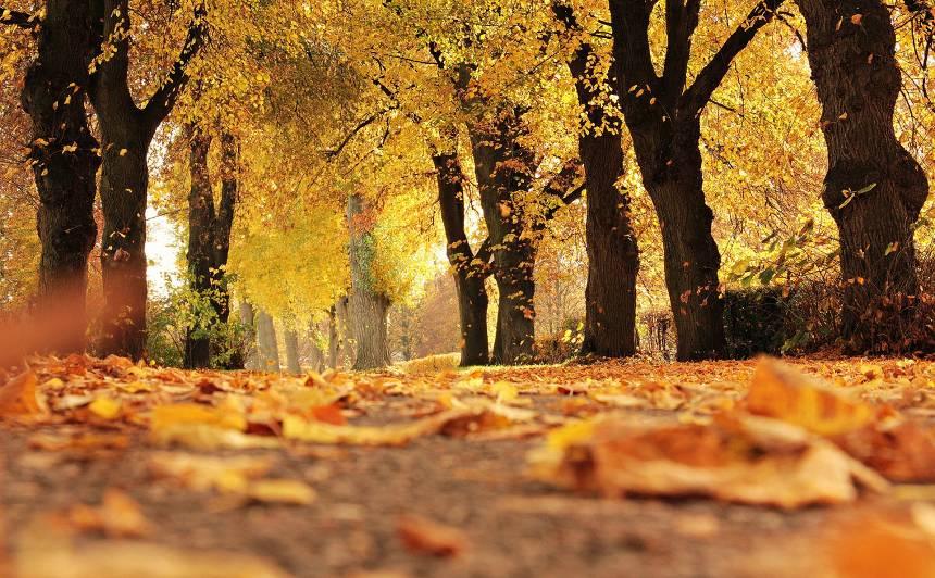 Pārspēts 16.oktobra <strong>nacionālais siltuma rekords</strong>