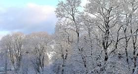 PASAKAINI FOTO: <strong>Pirmais sniegs Latvijā</strong>