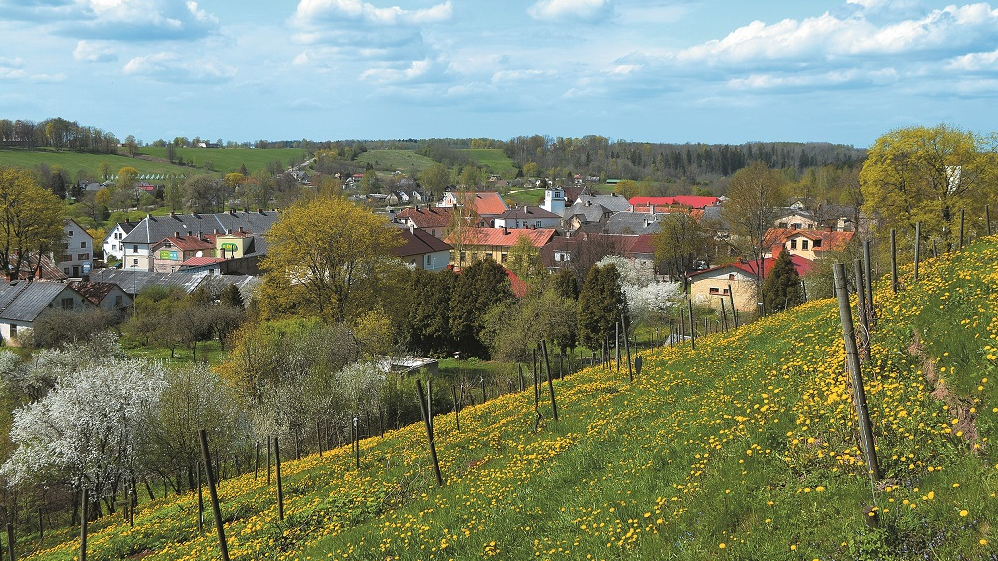 <strong>Vistālāk uz ziemeļiem.</strong> Latvijas slavenākais vīna kalns