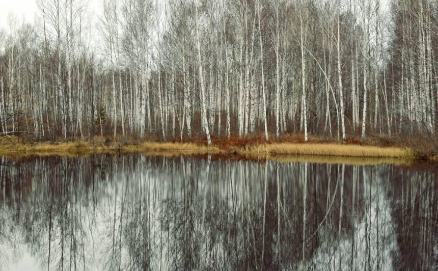 Labots visas Latvijas <strong>14. novembra siltuma rekords</strong>
